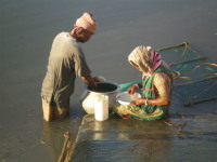 Sunderban prawn collectors
